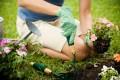 concorso per giardinieri Comune Chiaravalle