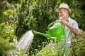 bando concorso giardinieri comune schio
