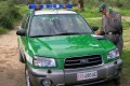 bando concorso corpo forestale carabinieri