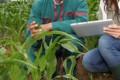 bando concorso lombardia tecnici agrario forestale